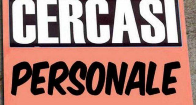 cercasi-personale
