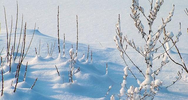 L'Epifania porta il gelo: neve anche a bassa quota
