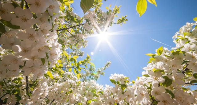 Previsioni meteo Pasqua e Pasquetta 2017