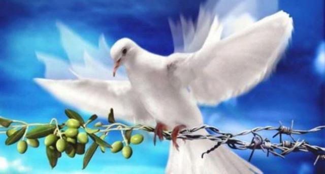 Popolare Domenica delle Palme, 9 aprile 2017: frasi e aforismi sulla pace  IM74