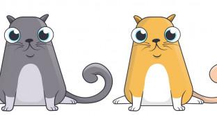 CryptoKitties, tutti pazzi per i gattini virtuali