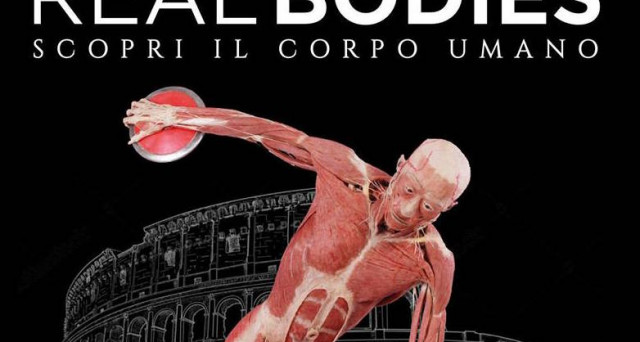 Mostra Real Bodies a Roma 2017: date e prezzi biglietti della rassegna dedicata al corpo umano che si terrà nella sede espositiva Guido Reni District.