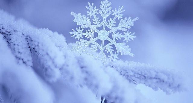 Allarme gelo in arrivo, le previsioni meteo ci dicono che ci attende una settimana di freddo senza tregua quasi fino al week end.
