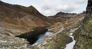 Secondo uno studio effettuato dall'Università di Milano Bicocca i pesticidi utilizzati in Pianura Padana per coltivare i campi minaccerebbero le larve degli insetti dei ghiacciai alpini.