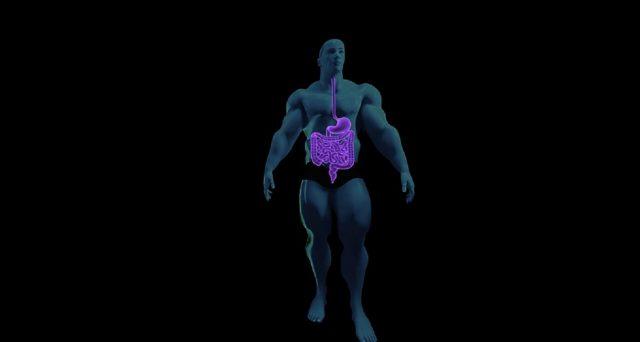 La fibrosi cistica è una malattia genetica molto diffusa che colpisce sopratutto l'apparato digerente e quello respiratorio. Le ultime novità riguardanti la lotta a tale malattia ci comunicano che nel 2020 sull'uomo verrà sperimentato un nuovo farmaco.
