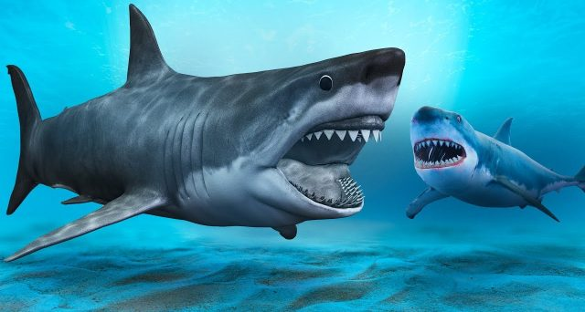 Ecco i giganti estinti, gli animali più grandi del pianeta, ma sul podio anche una specie ancora esistente.