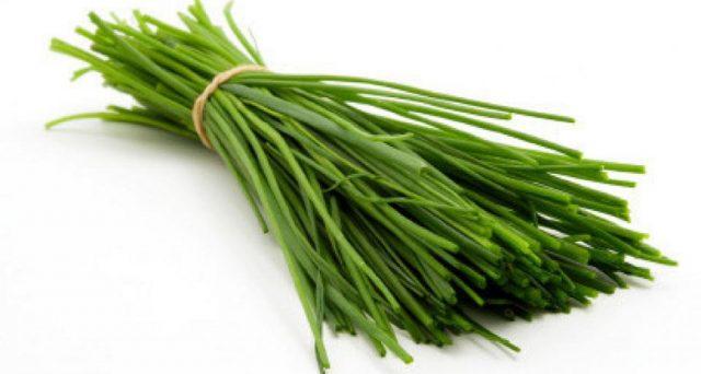 Sono moltissimi i benefici per la salute dell'erba cipollina, pianta aromatica molto utilizzata in cucina: tutte le indicazioni e gli studi più recenti.
