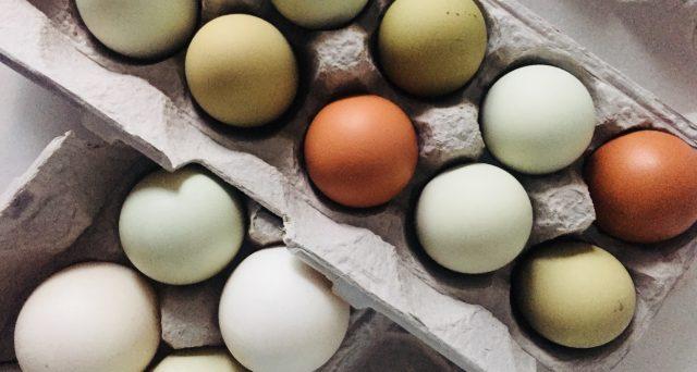 Richiamo alimentare per uova biologiche a marchio Oliviero Claudio.