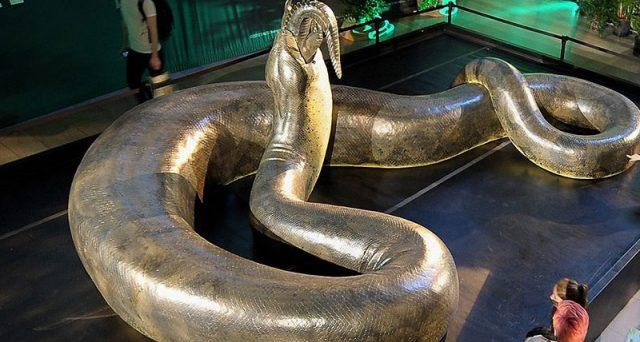 Quali sono i serpenti più lunghi del mondo? Ce lo dice questa lista.