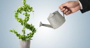 """Obbligazioni """"verdi"""" cosa sono e come funzionano.  Aumentano le emissioni green nel mondo, ma in Italia c'è ancora scarso interesse"""