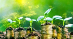 Secondo uno studio di Schroders, il 63% degli italiani dà più spazio agli investimenti sostenibili