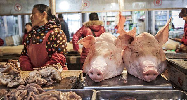 La febbre suina in Cina ha surriscaldato la crescita dei prezzi al consumo e posto fine al rally del mercato obbligazionario. E Pechino reagisce con un altro taglio dei tassi a 12 mesi.