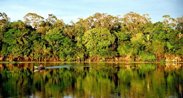 Emissioni di obbligazioni verdi per aiutare l'Amazzonia. Il Brasile è già all'avanguardia in tema di sostenibilità ambientale e punta a consolidare il suo primato.