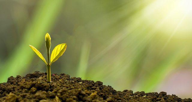 Il Tesoro lancerà BTp green nel 2021