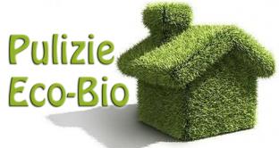 Detersivi ecologici per il rispetto dell'ambiente e della salute: ecco cosa c'è da sapere e dove acquistarli.
