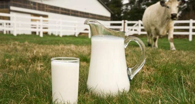 Misure Ue per affrontare la crisi del latte. I 21 milioni destinati all'Italia saranno utilizzati anche come supporto crisi latte ovino.