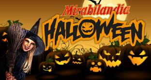 Ecco il prezzo dei biglietti e le info sulle riduzioni online, gli orari e le più belle attrazioni di Mirabilandia per Halloween 2016.