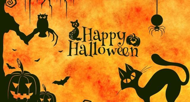 Ecco l'origine con Jack O' Lantern di  Halloween, le offerte di Rainbow MagicLand del 31 ottobre 2016 e dpve trovare biglietti auguri da stampare per risparmiare.