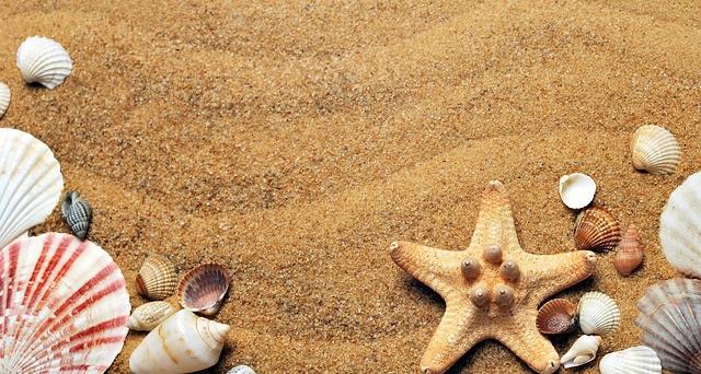 Vacanze al mare primavera 2021: dal Mar Rosso alle Canarie low cost