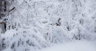 È in arrivo il grande freddo e la bolletta del gas di fine stagione potrebbe essere altissima: ecco come risparmiare con i riscaldamenti senza rinunciare a nulla.