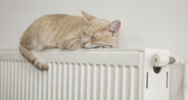 I termosifoni per chi vive in un palazzo con riscaldamento centralizzato non possono essere accesi quando si vuole: ecco allora le date e gli orari di accensione dei riscaldamenti e come gestire le temperature per risparmiare.