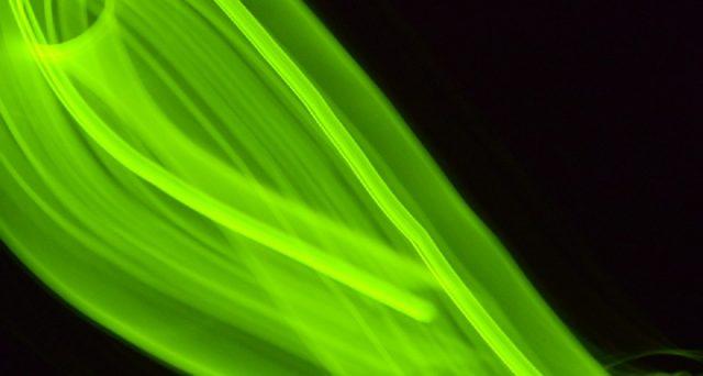 Dall'analisi di Selectra si evince che il 73%  dei fornitori di energia elettrica propone  solo offerte green o che hanno un'opzione verde.
