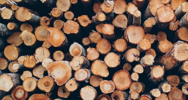 È possibile risparmiare su una serie di costi: tutto quello che occorre sapere sull'acquisto della legna per camini e stufe.