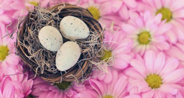 Risparmiare sulla spesa di Pasqua e Pasquetta 2021 è davvero semplice: basta seguire alcuni semplici consigli.