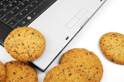 Il Garante per la privacy ha imposto nuove norme sull'utilizzo dei cookie in base alle ultime direttive europee: tutti i siti avranno tempo un anno per adeguarsi alle nuove regole. Prima di scoprire cosa dice il provvedimento, scopriamo cosa sono i cookie e come minacciano la nostra privacy.