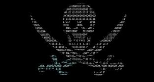 Aumentano in tutto il mondo le installazioni di software pirata sui PC di tutto il mondo, in particolare in Italia, dove un utente su due preferisce programmi senza licenza.