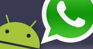 Polemiche sull'aggiornamento WhatsApp 2017: come provare la funzione di eliminazione messaggi entro due minuti, download apk e beta testing.