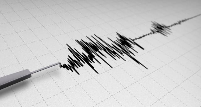 Ecco le migliori app per rilevare i terremoti in tempo reale, monitorare la situazione delle faglie e le zone sismiche, disponibili sia su dispositivi iOS che Android.