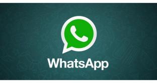 WhatsApp con la spunta verde, versione Business anche gratis, a cosa serve e cosa offre