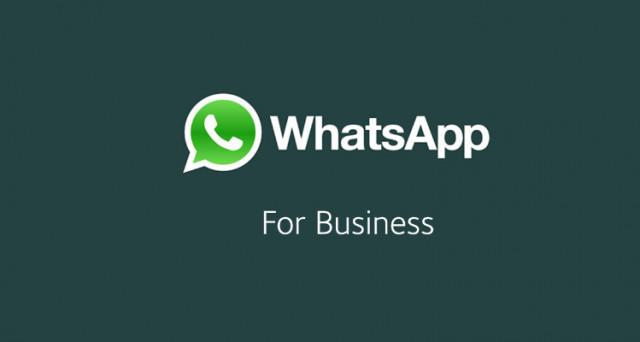WhatsApp, partiti i test per la versione Business, ecco cosa cambia e come verrà visualizzato in chat