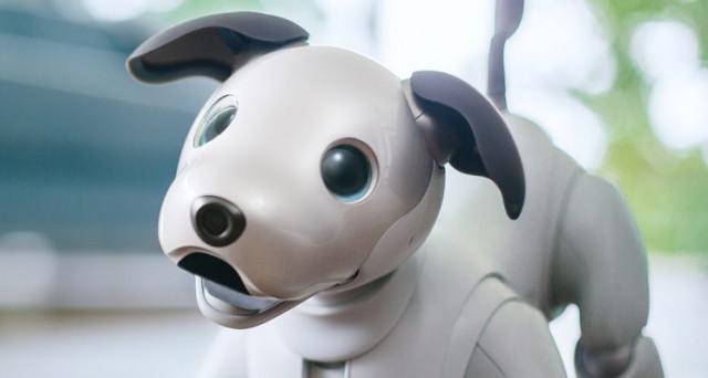 Aibo, il cane robot di Sony, torna dal regno dei morti dopo 10 anni