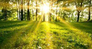 Arriva il primo giorno di primavera, l'equinozio di oggi 20 marzo 2018, come mai con un giorno di anticipo?