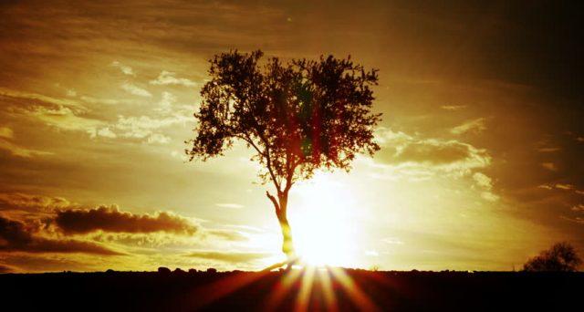 Oggi è il giorno più lungo dell'anno, arriva il solstizio d'estate, celebrato in molti paesi del mondo, ma quasi ignorato in Italia.