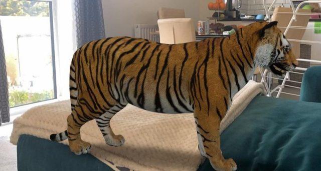 Si allunga l'elenco degli animali 3D, sempre in modalità realtà aumentata.