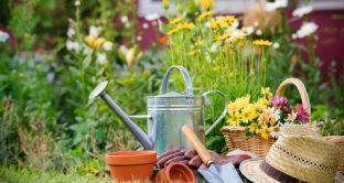 giardiniere-bonus-verde