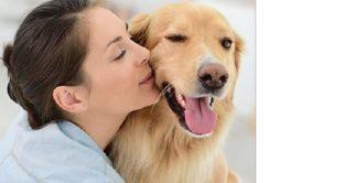 Super offerte Trenitalia agosto 2018: i cani di media e grossa taglia viaggiano in promozione a 5 euro mentre quelli piccoli gratis: ecco le info in merito.